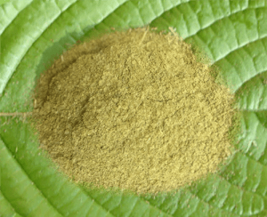 Borneo Kratom – Choosing Among Red, Green and White Kratom Leaves
