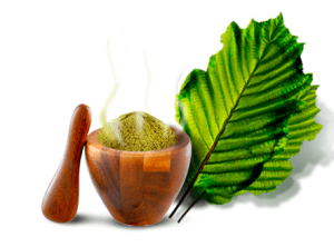 Kratom as Hyped or True Therapeutic Product