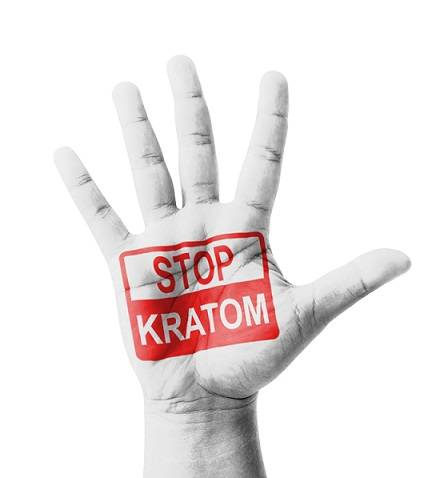 Why Was Kratom Banned in Thailand?