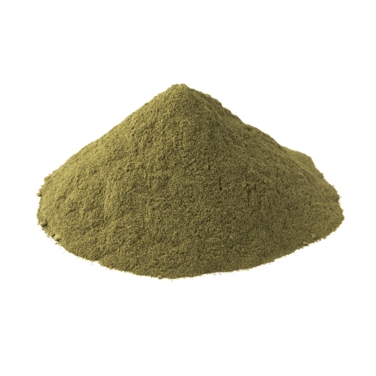 green ketapang kratom powder